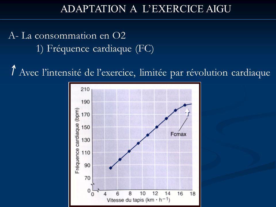 ADAPTATION A LEXERCICE AIGU A- La consommation en O2 1) Fréquence cardiaque (FC) Avec lintensité de lexercice, limitée par révolution cardiaque