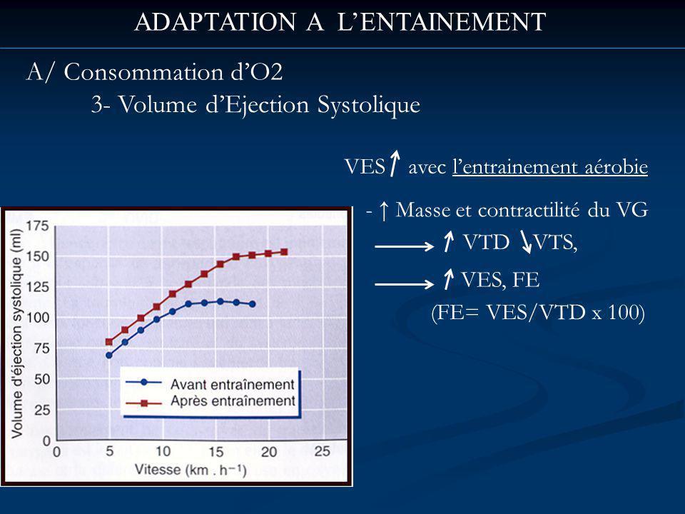 ADAPTATION A LENTAINEMENT A/ Consommation dO2 3- Volume dEjection Systolique VES avec lentrainement aérobie - Masse et contractilité du VG VTD VTS, VES, FE (FE= VES/VTD x 100)