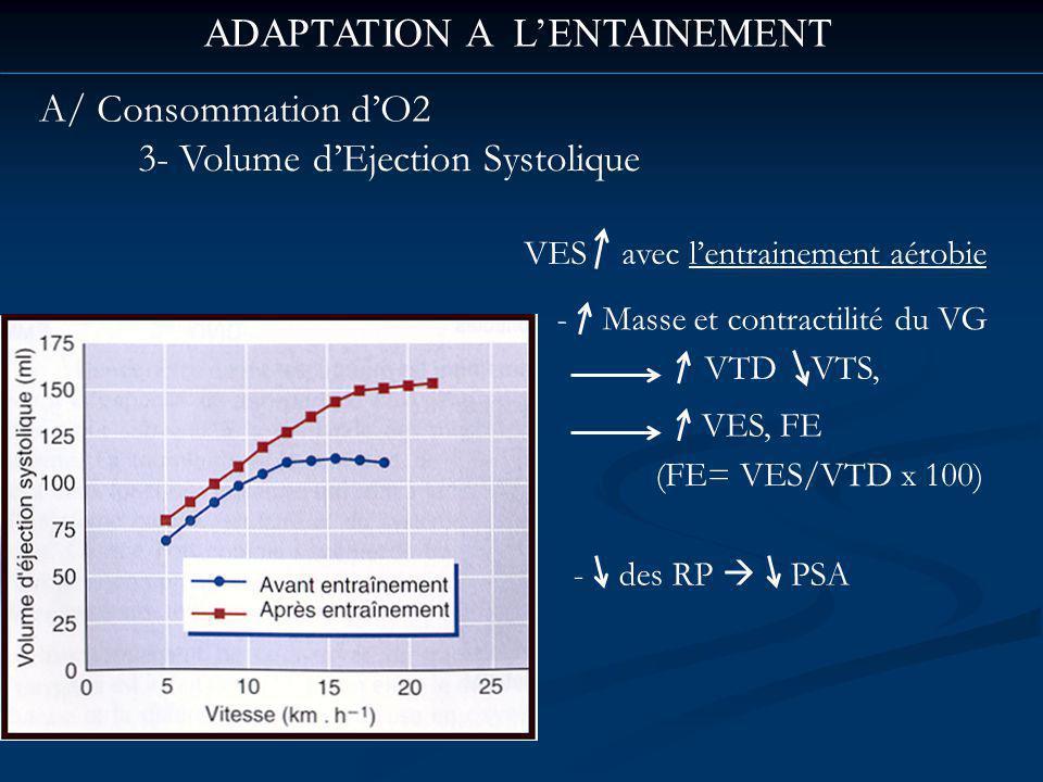 ADAPTATION A LENTAINEMENT A/ Consommation dO2 3- Volume dEjection Systolique VES avec lentrainement aérobie - Masse et contractilité du VG VTD VTS, VES, FE (FE= VES/VTD x 100) - des RP PSA