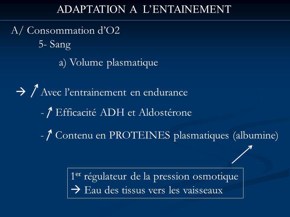 ADAPTATION A LENTAINEMENT A/ Consommation dO2 5- Sang a) Volume plasmatique Avec lentrainement en endurance - Efficacité ADH et Aldostérone 1 er régulateur de la pression osmotique Eau des tissus vers les vaisseaux - Contenu en PROTEINES plasmatiques (albumine)
