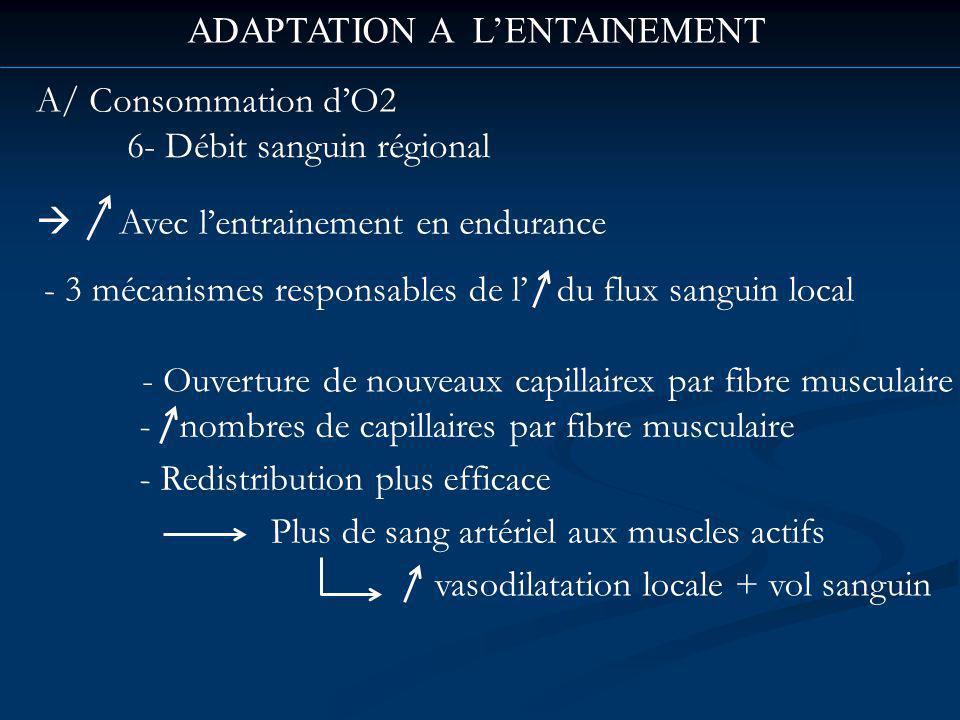 ADAPTATION A LENTAINEMENT A/ Consommation dO2 6- Débit sanguin régional Avec lentrainement en endurance - 3 mécanismes responsables de l du flux sanguin local - nombres de capillaires par fibre musculaire - Ouverture de nouveaux capillairex par fibre musculaire - Redistribution plus efficace Plus de sang artériel aux muscles actifs vasodilatation locale + vol sanguin