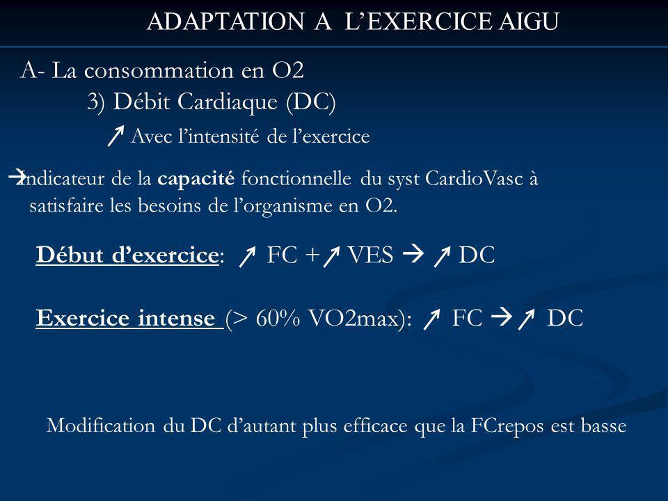 ADAPTATION A LEXERCICE AIGU A- La consommation en O2 3) Débit Cardiaque (DC) Avec lintensité de lexercice Indicateur de la capacité fonctionnelle du syst CardioVasc à satisfaire les besoins de lorganisme en O2.