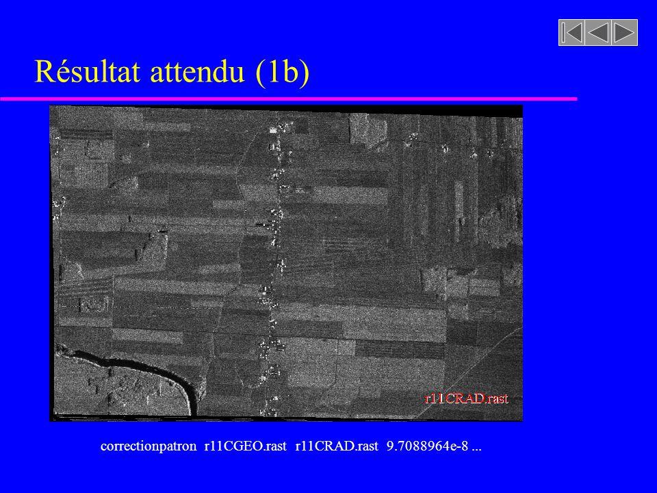 r11CGEO.rastr11CRAD.rast Résultat attendu (1b) correctionpatron r11CGEO.rast r11CRAD.rast 9.7088964e-8...