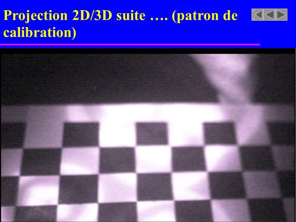 Projection 2D/3D suite …. (patron de calibration)
