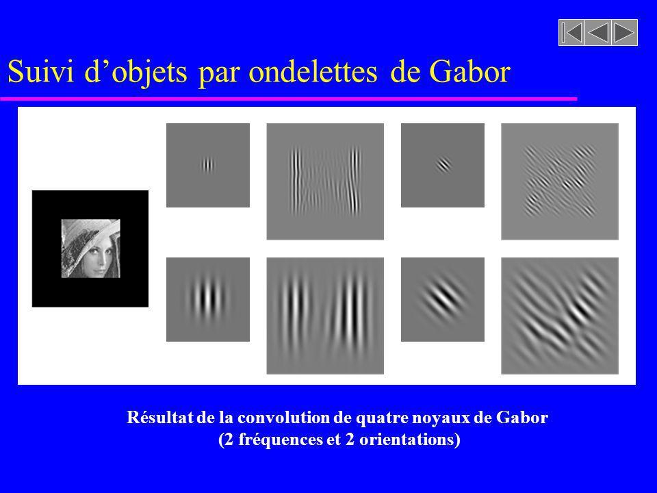 Suivi dobjets par ondelettes de Gabor Résultat de la convolution de quatre noyaux de Gabor (2 fréquences et 2 orientations)