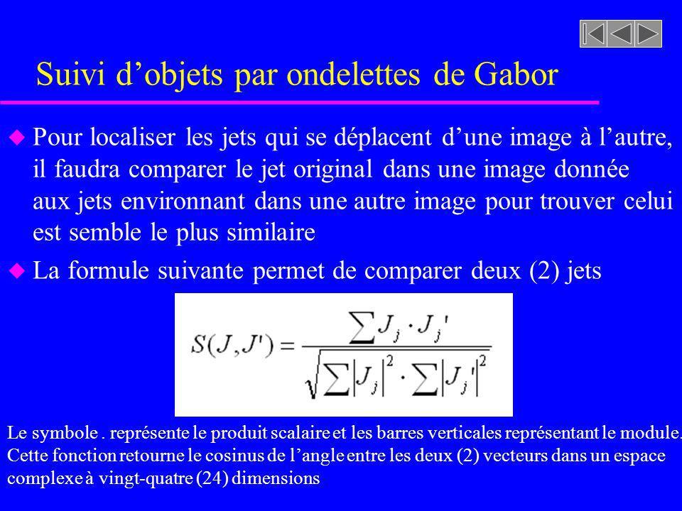 Suivi dobjets par ondelettes de Gabor u Pour localiser les jets qui se déplacent dune image à lautre, il faudra comparer le jet original dans une image donnée aux jets environnant dans une autre image pour trouver celui est semble le plus similaire u La formule suivante permet de comparer deux (2) jets Le symbole.
