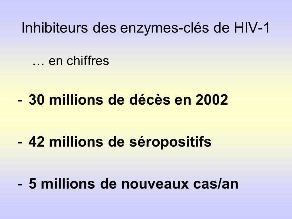 Inhibiteurs des enzymes-clés de HIV-1 … en chiffres -30 millions de décès en 2002 -42 millions de séropositifs -5 millions de nouveaux cas/an