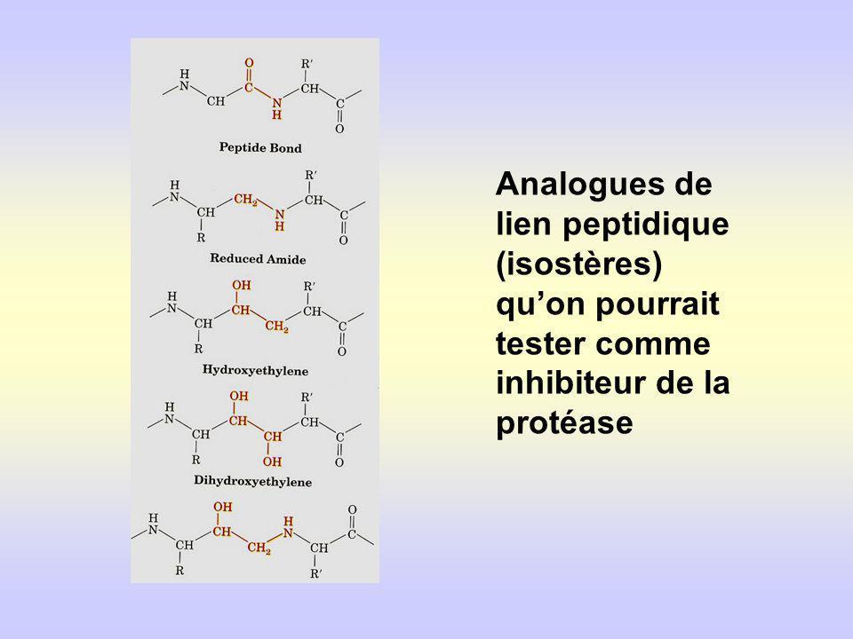 Analogues de lien peptidique (isostères) quon pourrait tester comme inhibiteur de la protéase