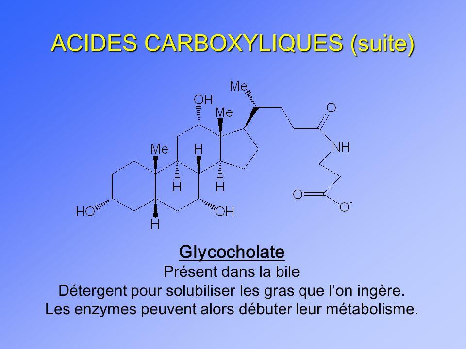 ACIDES CARBOXYLIQUES (suite) Glycocholate Présent dans la bile Détergent pour solubiliser les gras que lon ingère. Les enzymes peuvent alors débuter l