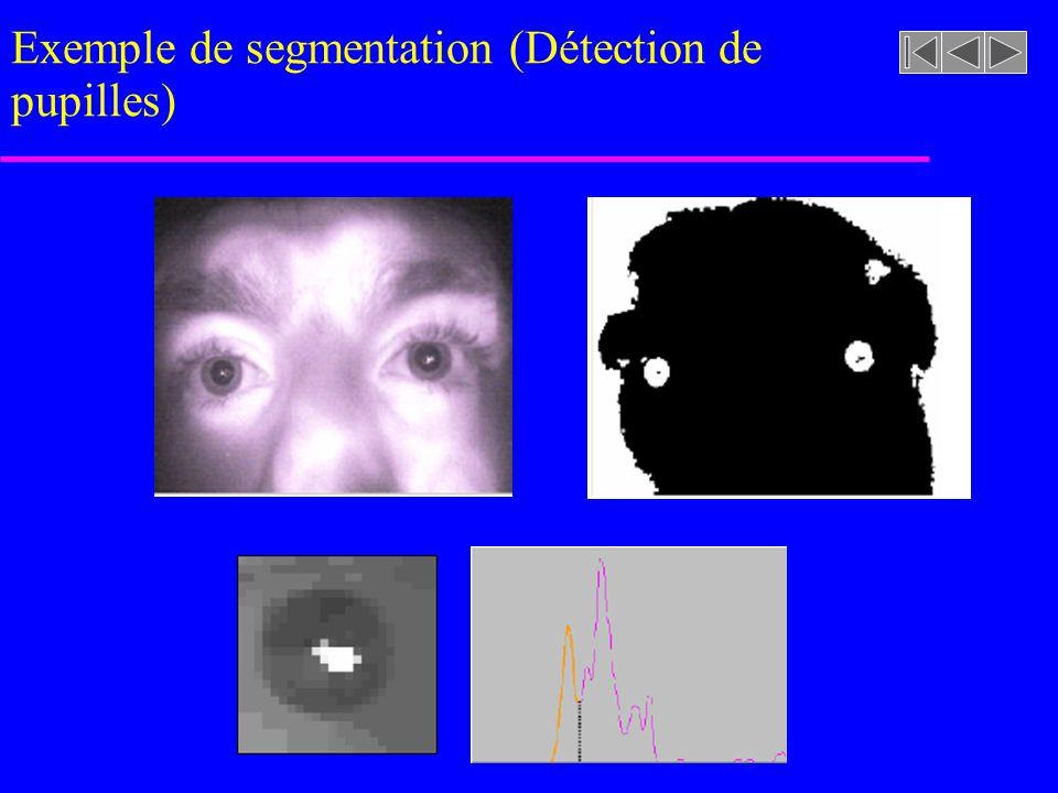imageasegmenter.rast Exemple de segmentation segmentation