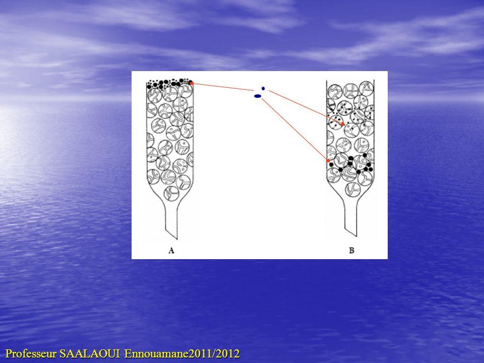 Caract é ristiques des Phase stat Le des pores (r é ticulation?) Le des pores (r é ticulation?) La taille et la forme des particules La taille et la forme des particules –Petites –Sphériques –Granulométrie variable Linertie Linertie Laffinité des gels pour les solutés Laffinité des gels pour les solutés La consistance La consistance micomiètre 120 - Professeur SAALAOUI Ennouamane2011/2012