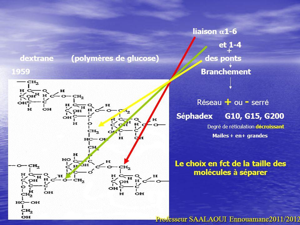 liaison 1-6 et 1-4 dextrane (polym è res de glucose) des ponts 1959 Branchement + R é seau + ou - serr é S é phadex G10, G15, G200 Degr é de r é ticul