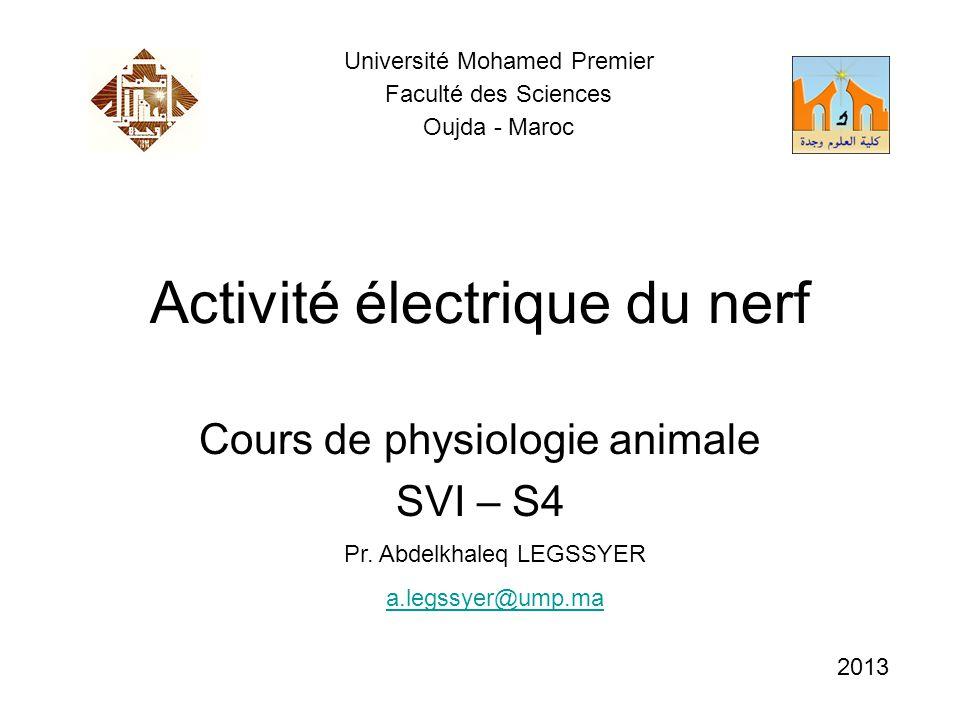 Activité électrique du nerf Cours de physiologie animale SVI – S4 Pr. Abdelkhaleq LEGSSYER a.legssyer@ump.ma Université Mohamed Premier Faculté des Sc