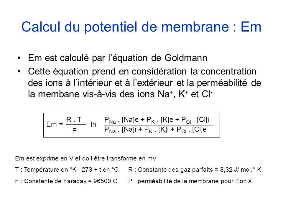Calcul du potentiel de membrane : Em Em est calculé par léquation de Goldmann Cette équation prend en considération la concentration des ions à lintér