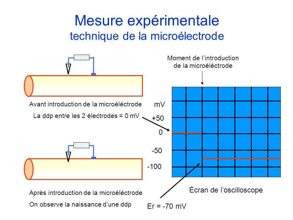 Mesure expérimentale technique de la microélectrode Avant introduction de la microéléctrode La ddp entre les 2 électrodes = 0 mV Après introduction de