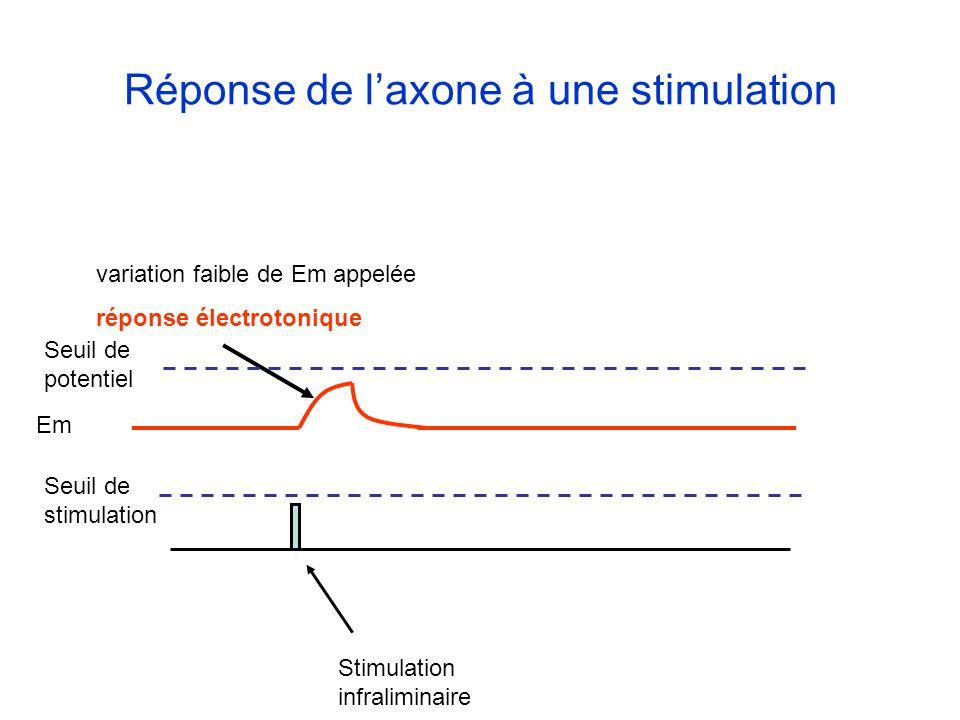 Stimulation infraliminaire variation faible de Em appelée réponse électrotonique Réponse de laxone à une stimulation Em Seuil de potentiel Seuil de st