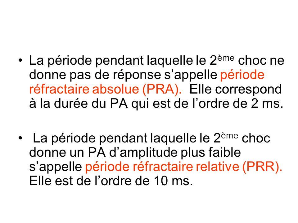 La période pendant laquelle le 2 ème choc ne donne pas de réponse sappelle période réfractaire absolue (PRA). Elle correspond à la durée du PA qui est