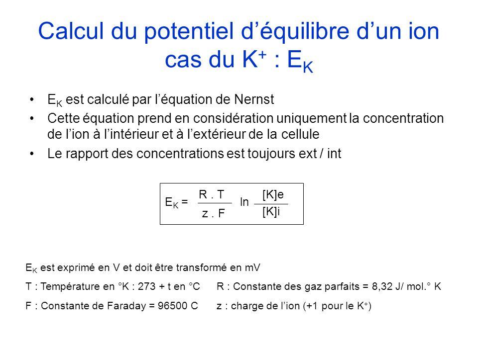 Calcul du potentiel déquilibre dun ion cas du K + : E K E K est calculé par léquation de Nernst Cette équation prend en considération uniquement la co