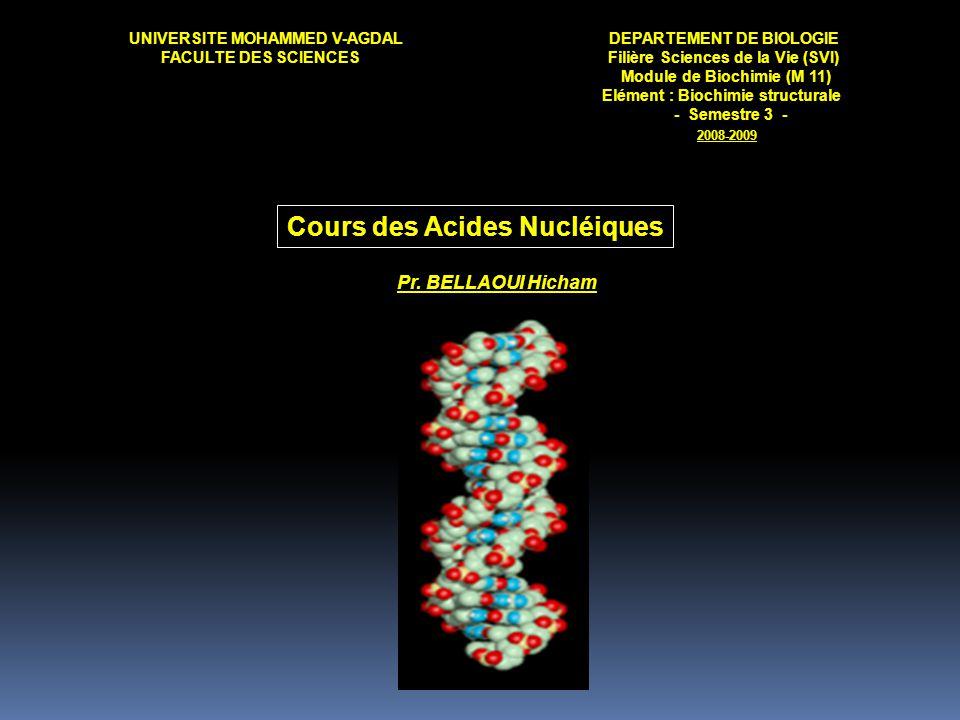 UNIVERSITE MOHAMMED V-AGDALDEPARTEMENT DE BIOLOGIE FACULTE DES SCIENCES Filière Sciences de la Vie (SVI) Module de Biochimie (M 11) Elément : Biochimi