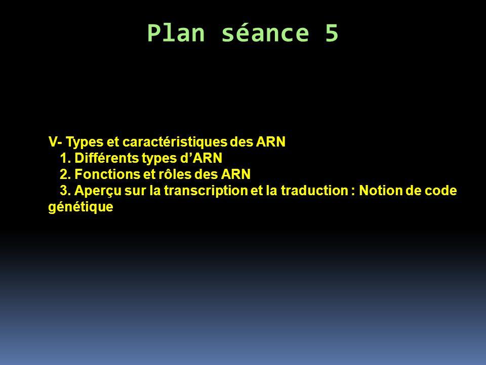 V- Types et caractéristiques des ARN 1. Différents types dARN 2. Fonctions et rôles des ARN 3. Aperçu sur la transcription et la traduction : Notion d
