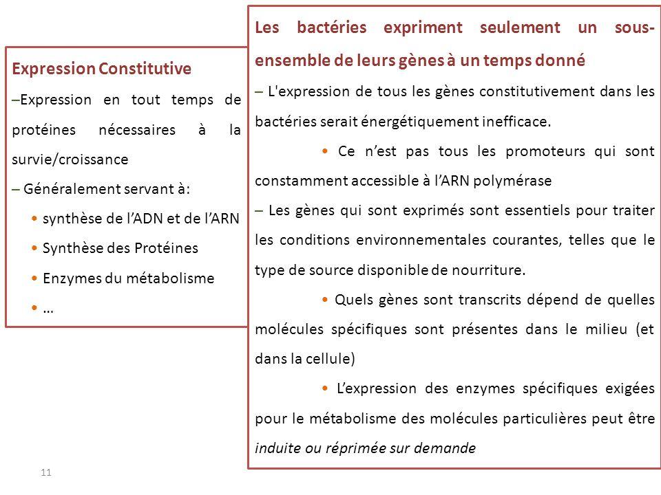 Expression Constitutive –Expression en tout temps de protéines nécessaires à la survie/croissance – Généralement servant à: synthèse de lADN et de lAR