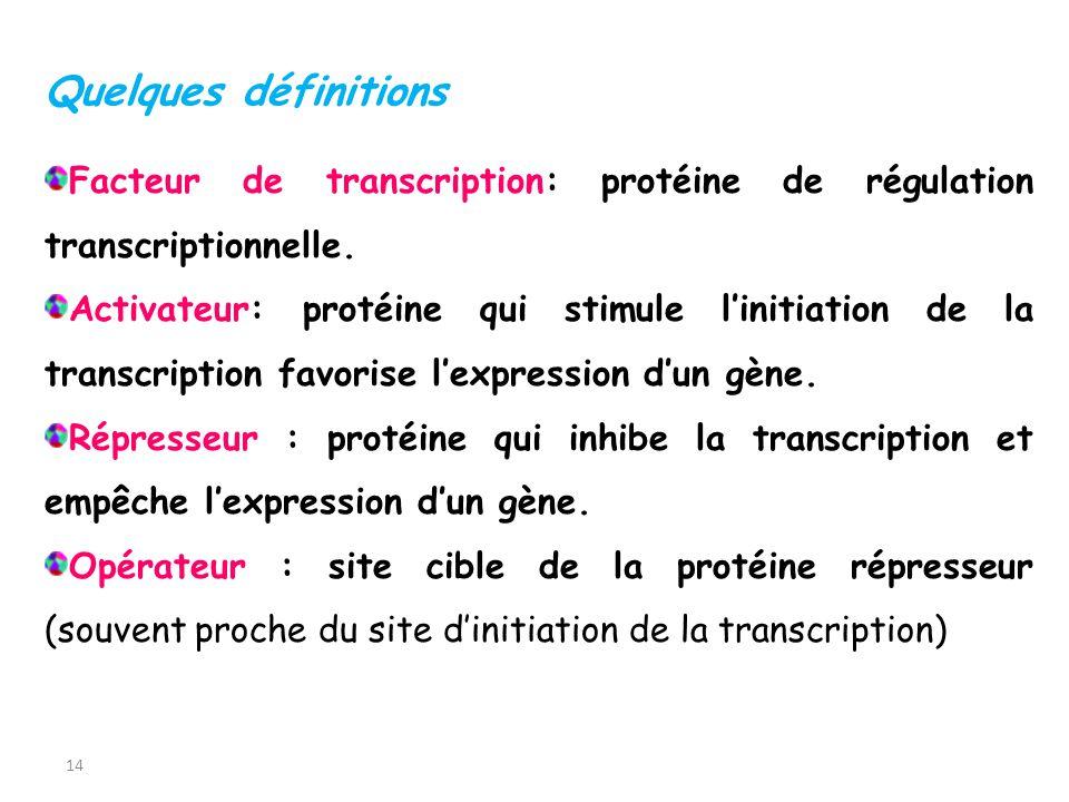 14 Quelques définitions Facteur de transcription: protéine de régulation transcriptionnelle. Activateur: protéine qui stimule linitiation de la transc