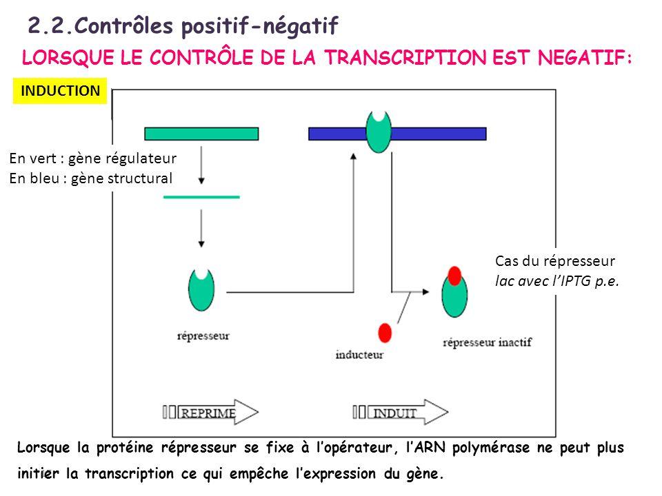 LORSQUE LE CONTRÔLE DE LA TRANSCRIPTION EST NEGATIF: 17 Lorsque la protéine répresseur se fixe à lopérateur, lARN polymérase ne peut plus initier la t