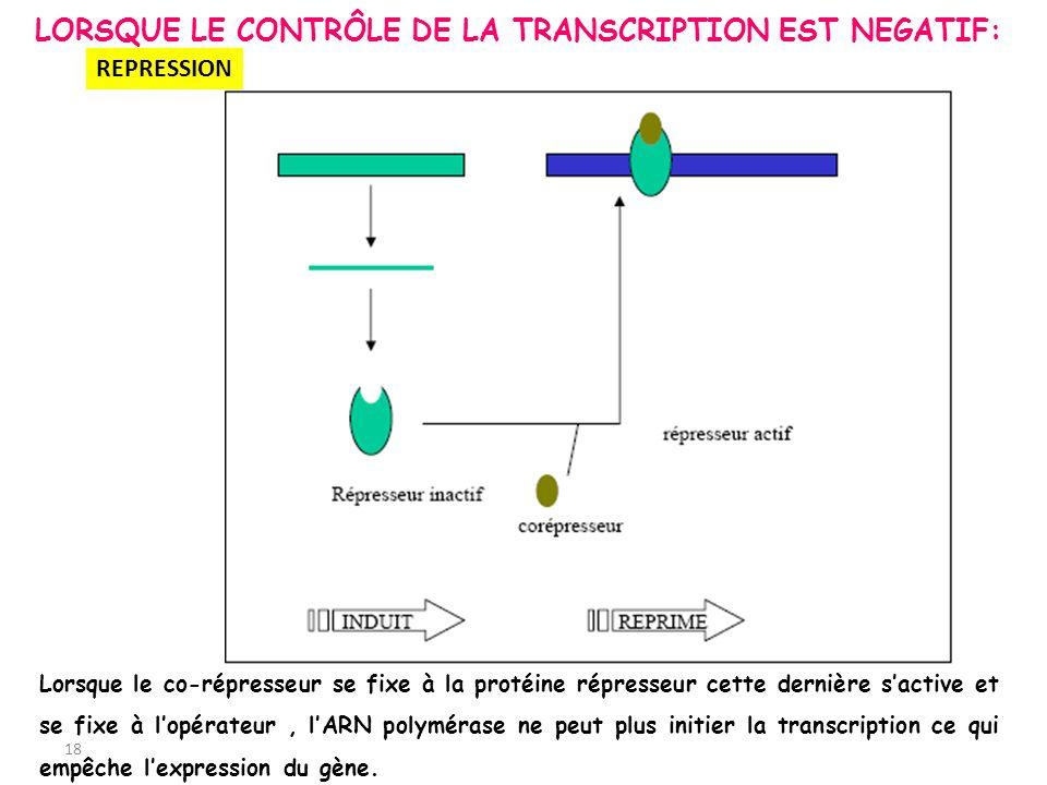 REPRESSION 18 LORSQUE LE CONTRÔLE DE LA TRANSCRIPTION EST NEGATIF: Lorsque le co-répresseur se fixe à la protéine répresseur cette dernière sactive et