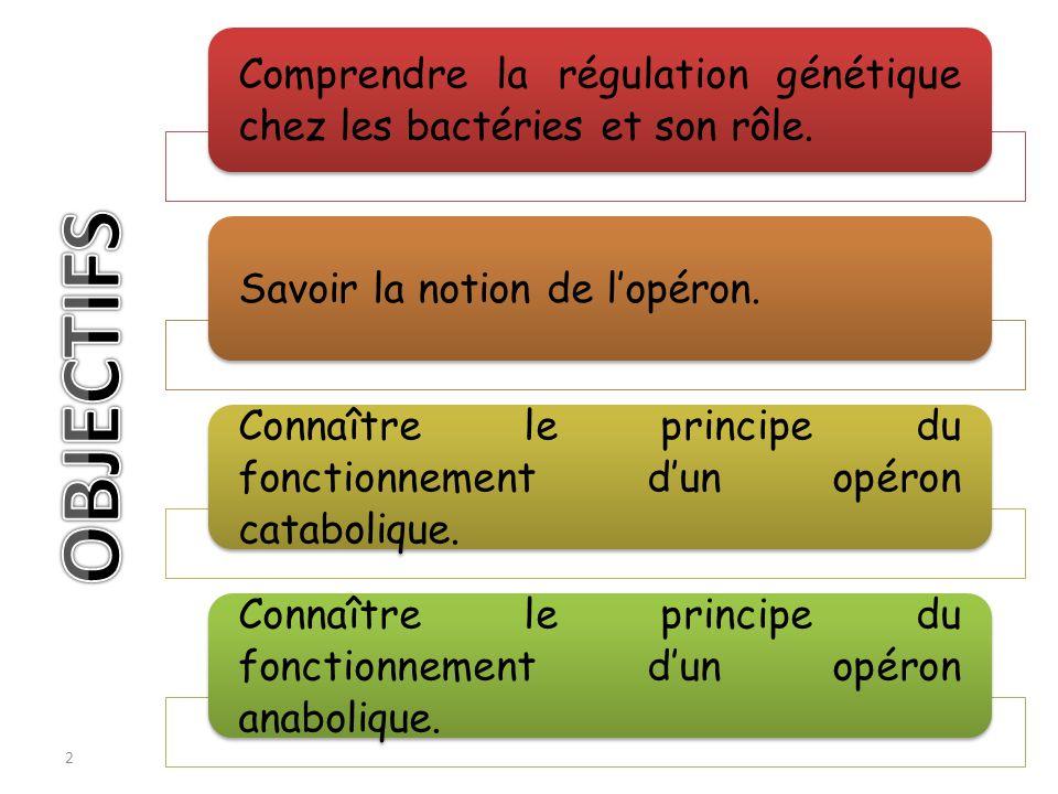 2 Comprendre la régulation génétique chez les bactéries et son rôle. Savoir la notion de lopéron. Connaître le principe du fonctionnement dun opéron c