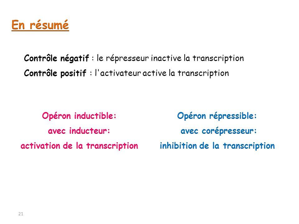 Contrôle négatif : le répresseur inactive la transcription Contrôle positif : l'activateur active la transcription 21