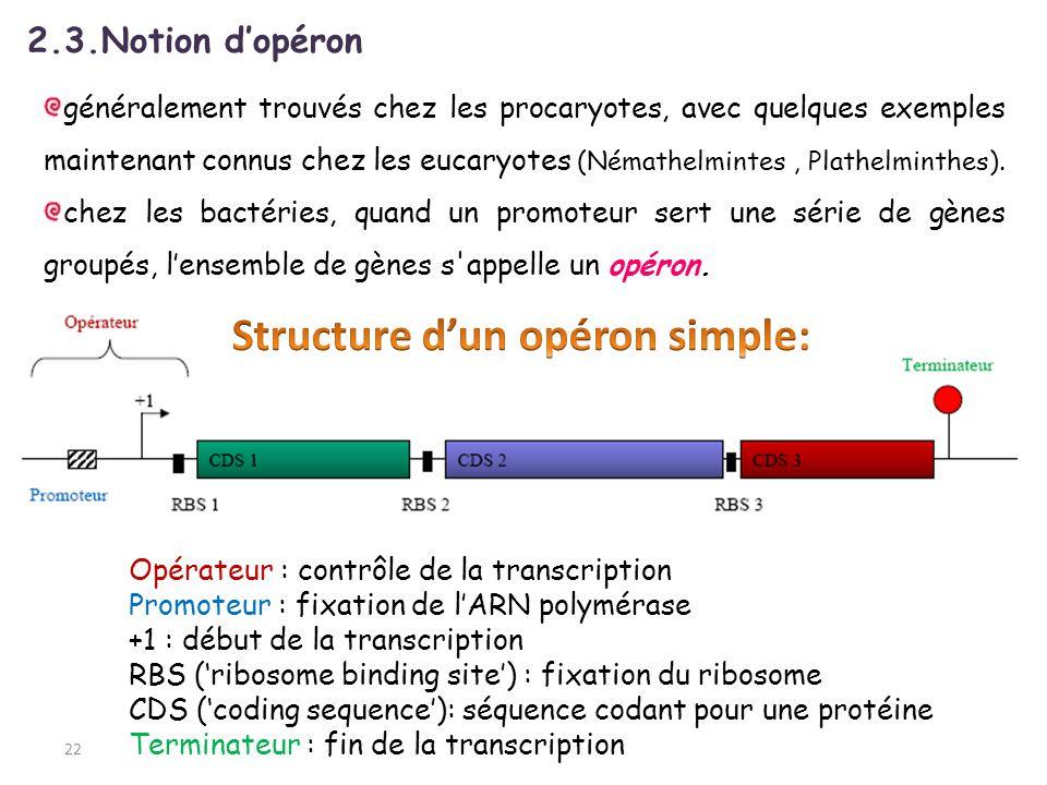 22 2.3.Notion dopéron généralement trouvés chez les procaryotes, avec quelques exemples maintenant connus chez les eucaryotes (Némathelmintes, Plathel