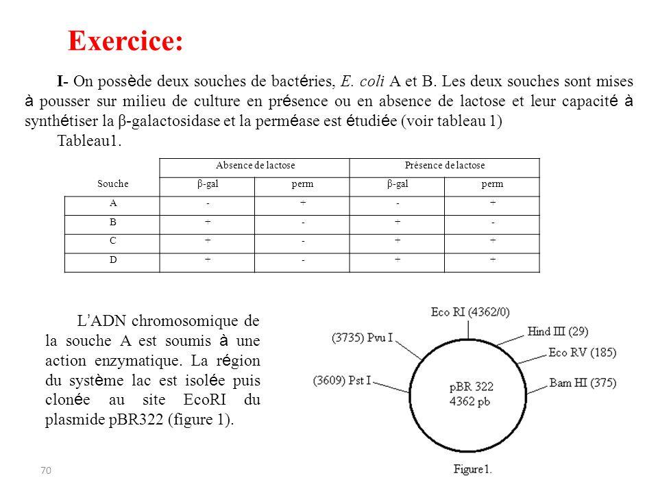 70 Absence de lactosePrésence de lactose Soucheβ-galpermβ-galperm A-+-+ B+-+- C+-++ D+-++ I- On poss è de deux souches de bact é ries, E. coli A et B.