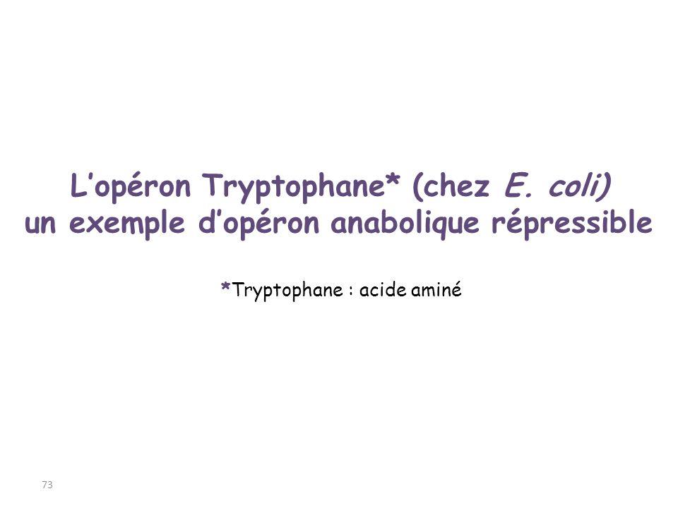 *Tryptophane : acide aminé 73 Lopéron Tryptophane* (chez E. coli) un exemple dopéron anabolique répressible