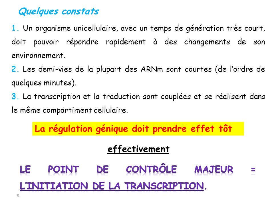 9 2.1.Stratégies de contrôle de linitiation de la transcription 2.Régulation de la transcription 2 modes distincts de contrôle de linitiation de la transcription 1- un contrôle constitutif qui dépend de la structure du promoteur 2- un contrôle de régulation qui est sous la dépendance de protéines régulatrices