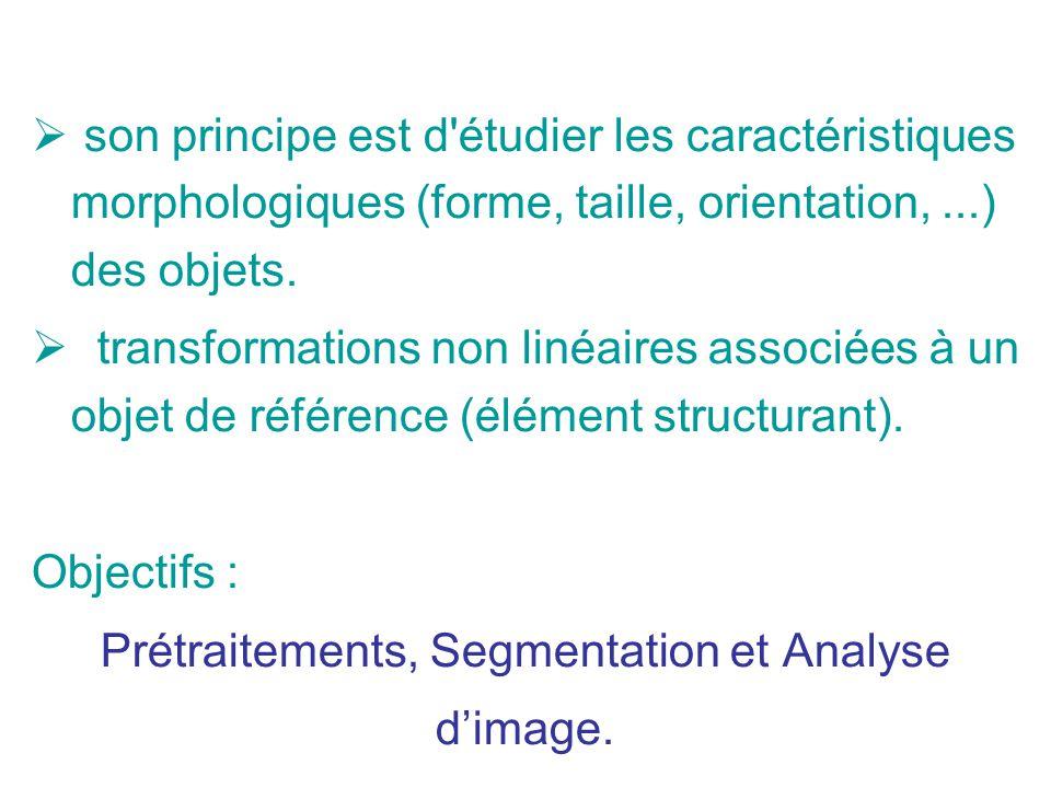 son principe est d'étudier les caractéristiques morphologiques (forme, taille, orientation,...) des objets. transformations non linéaires associées à