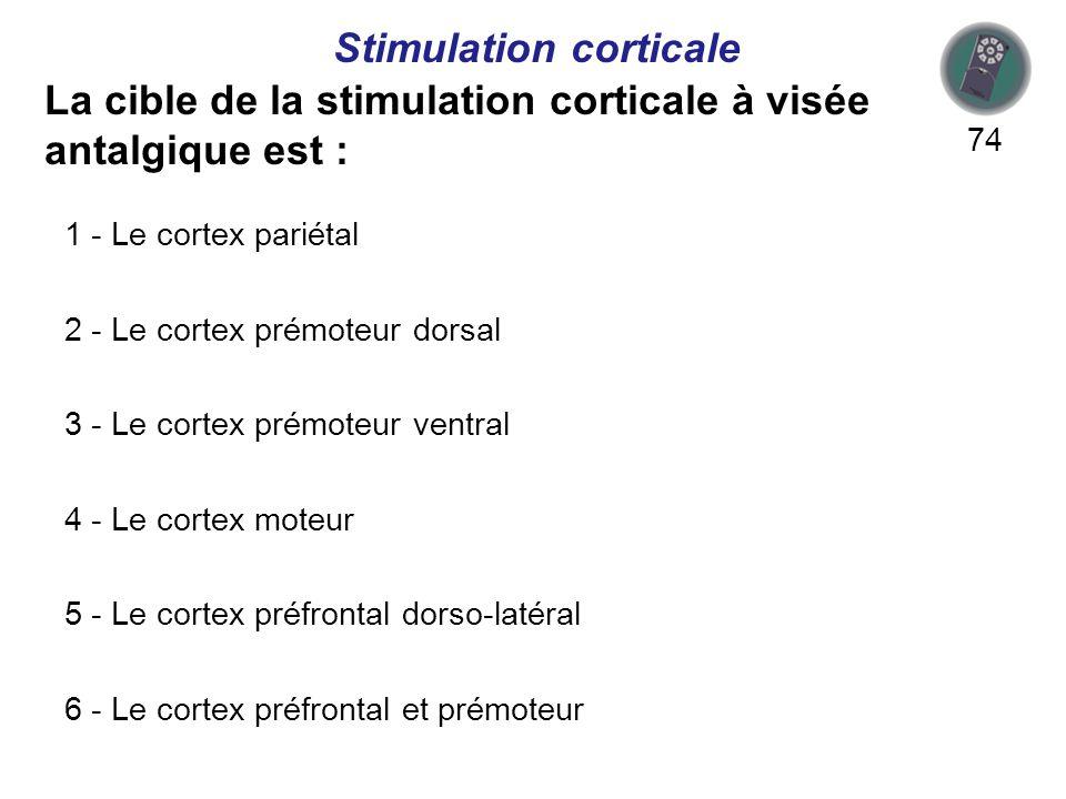 La cible de la stimulation corticale à visée antalgique est : 74 Stimulation corticale 1 - Le cortex pariétal 2 - Le cortex prémoteur dorsal 3 - Le cortex prémoteur ventral 4 - Le cortex moteur 5 - Le cortex préfrontal dorso-latéral 6 - Le cortex préfrontal et prémoteur