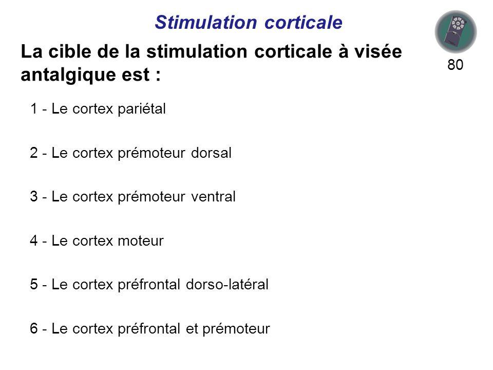 La cible de la stimulation corticale à visée antalgique est : 80 Stimulation corticale 1 - Le cortex pariétal 2 - Le cortex prémoteur dorsal 3 - Le cortex prémoteur ventral 4 - Le cortex moteur 5 - Le cortex préfrontal dorso-latéral 6 - Le cortex préfrontal et prémoteur