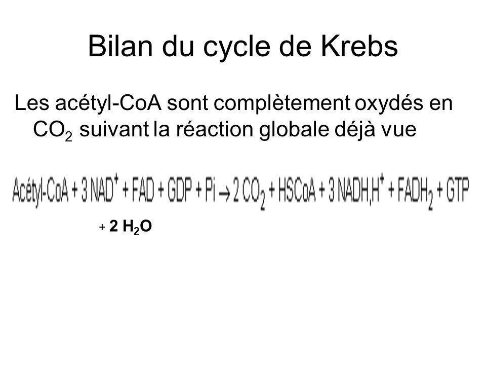 Bilan du cycle de Krebs Les acétyl-CoA sont complètement oxydés en CO 2 suivant la réaction globale déjà vue + 2 H 2 O