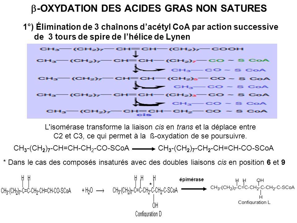 -OXYDATION DES ACIDES GRAS NON SATURES 1°) Élimination de 3 chaînons dacétyl CoA par action successive de 3 tours de spire de lhélice de Lynen L'isomé