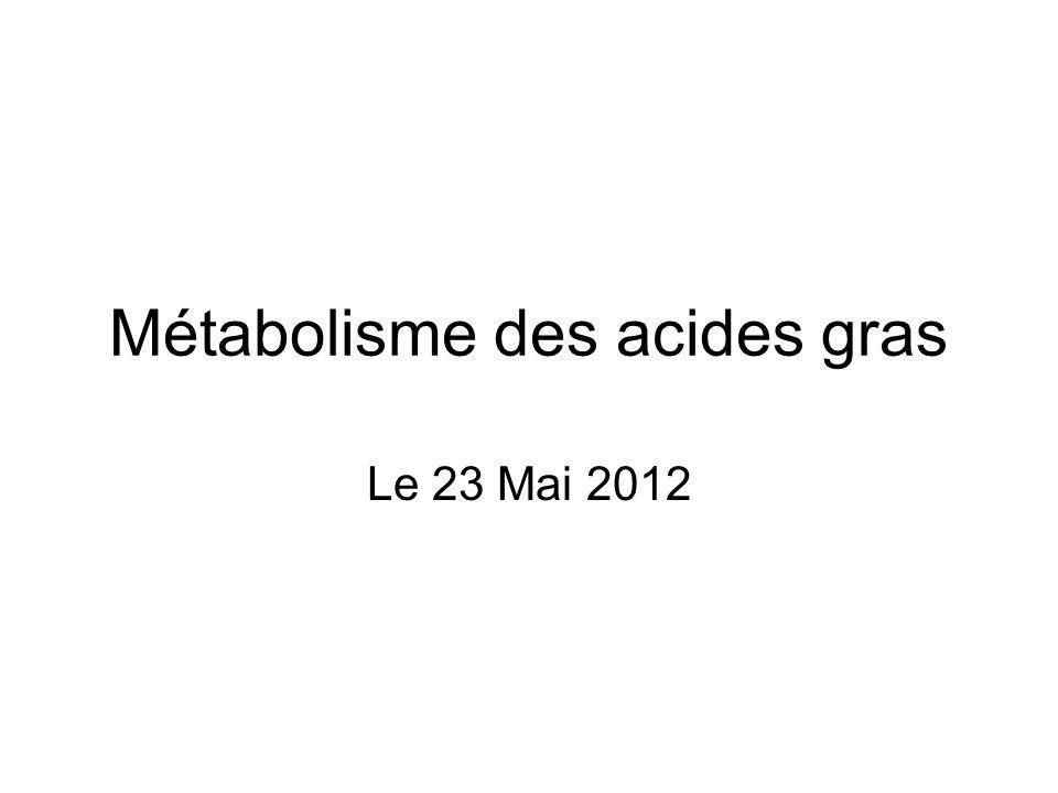 Métabolisme des acides gras Le 23 Mai 2012