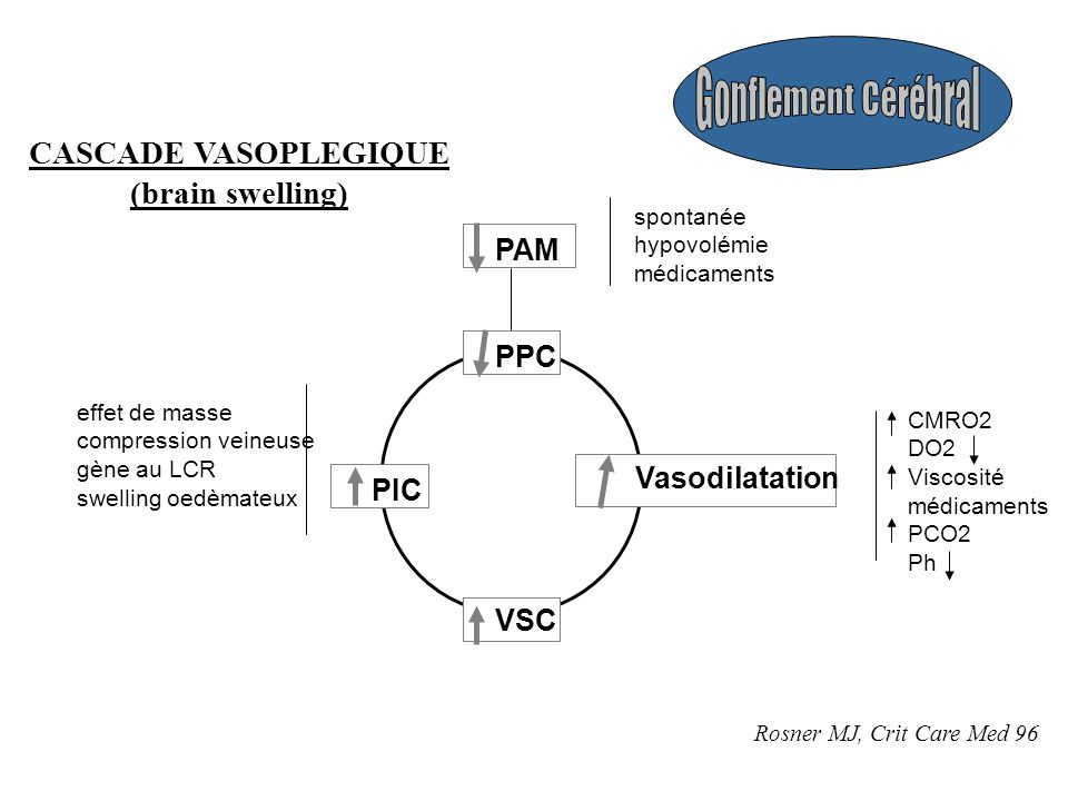 PPC Vasodilatation PIC VSC PAM effet de masse compression veineuse gène au LCR swelling oedèmateux CMRO2 DO2 Viscosité médicaments PCO2 Ph spontanée hypovolémie médicaments CASCADE VASOPLEGIQUE (brain swelling) Rosner MJ, Crit Care Med 96