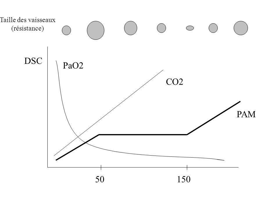 50150 CO2 PaO2 PAM DSC Taille des vaisseaux (résistance)