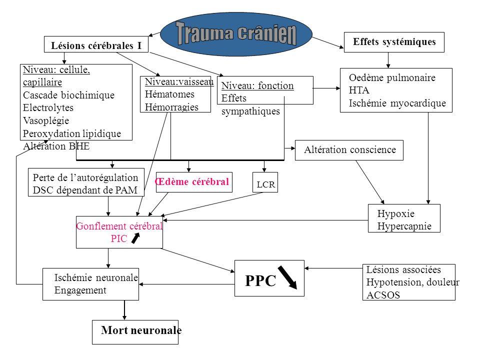 Gonflement cérébral PIC Perte de lautorégulation DSC dépendant de PAM Lésions cérébrales I Effets systémiques Niveau: cellule, capillaire Cascade biochimique Electrolytes Vasoplégie Peroxydation lipidique Altération BHE Niveau:vaisseau Hématomes Hémorragies Niveau: fonction Effets sympathiques Oedème pulmonaire HTA Ischémie myocardique Œdème cérébral Altération conscience Hypoxie Hypercapnie Ischémie neuronale Engagement PPC Lésions associées Hypotension, douleur ACSOS Mort neuronale LCR