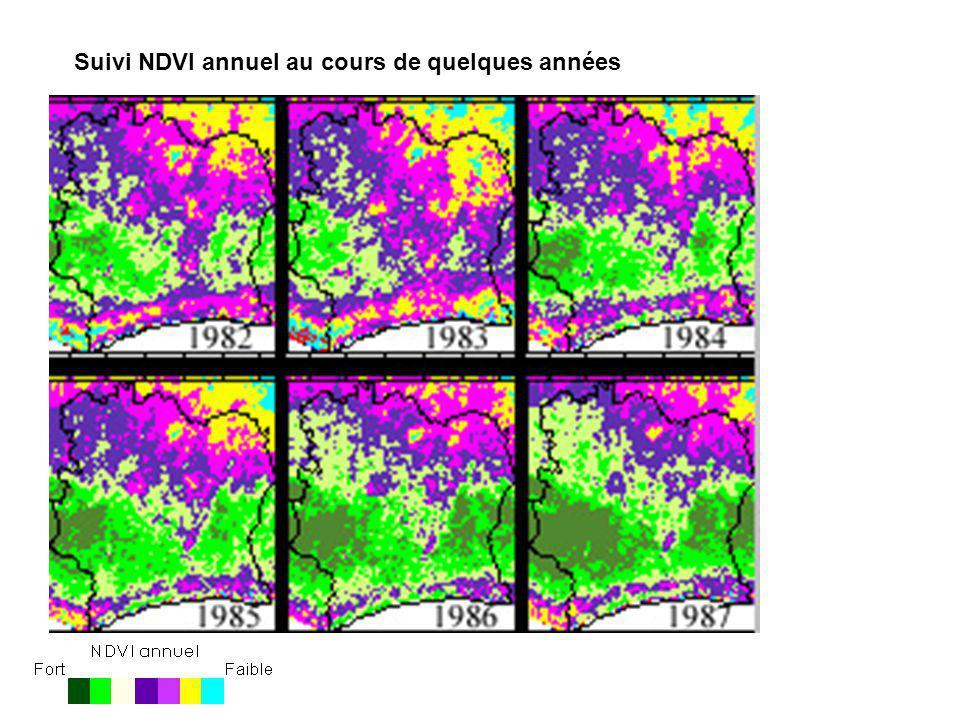 Suivi du coefficient de variation du NDVI annuel au cours de quelques années