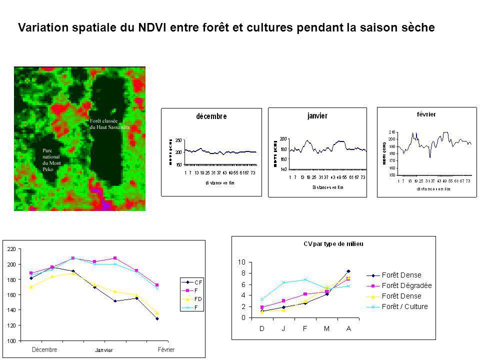 Variation spatiale du NDVI entre forêt et cultures pendant la saison sèche