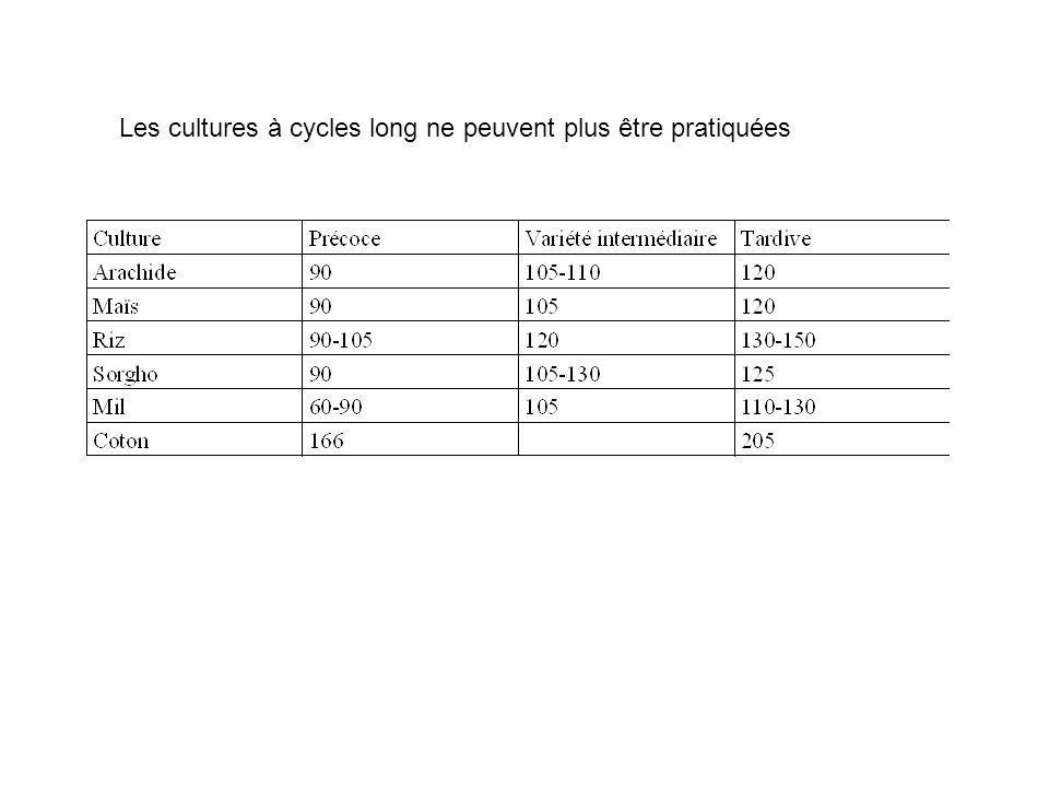 Les cultures à cycles long ne peuvent plus être pratiquées