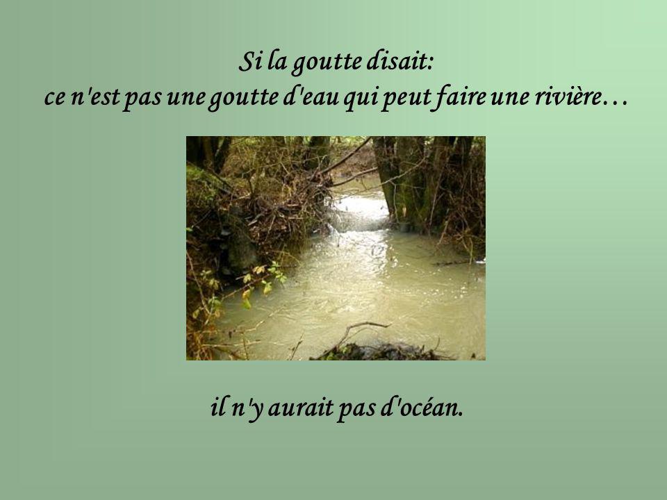 Si la goutte disait: ce n'est pas une goutte d'eau qui peut faire une rivière… il n'y aurait pas d'océan.