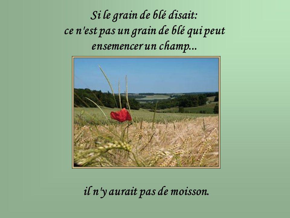 Si le grain de blé disait: ce n'est pas un grain de blé qui peut ensemencer un champ... il n'y aurait pas de moisson.
