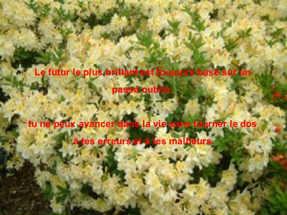 Le futur le plus brillant est toujours basé sur un passé oublié; tu ne peux avancer dans la vie sans tourner le dos à tes erreurs et à tes malheurs.