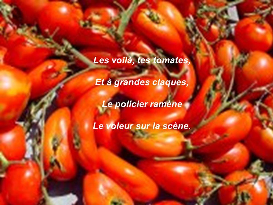 Les voilà, tes tomates, Et à grandes claques, Le policier ramène Le voleur sur la scène.